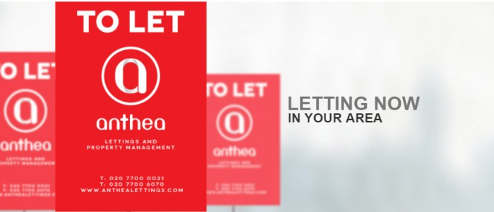 Anthea Lettings